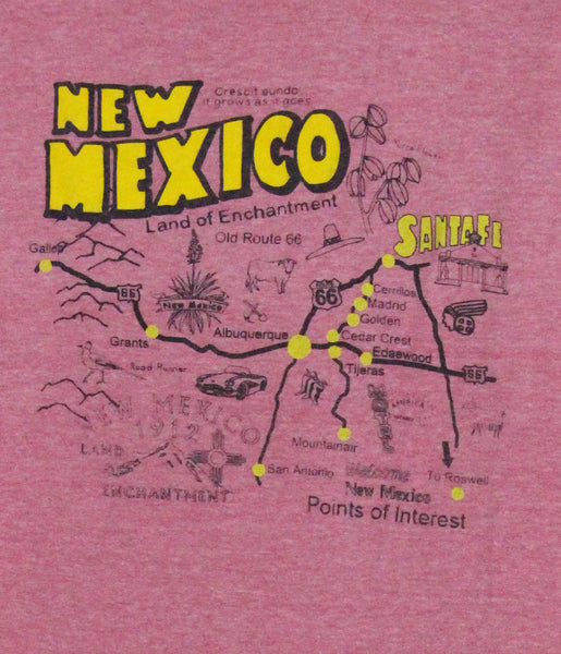 New Mexico T Shirt
