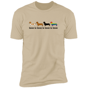 Love Is Love Next Level Premium Short Sleeve T-Shirt