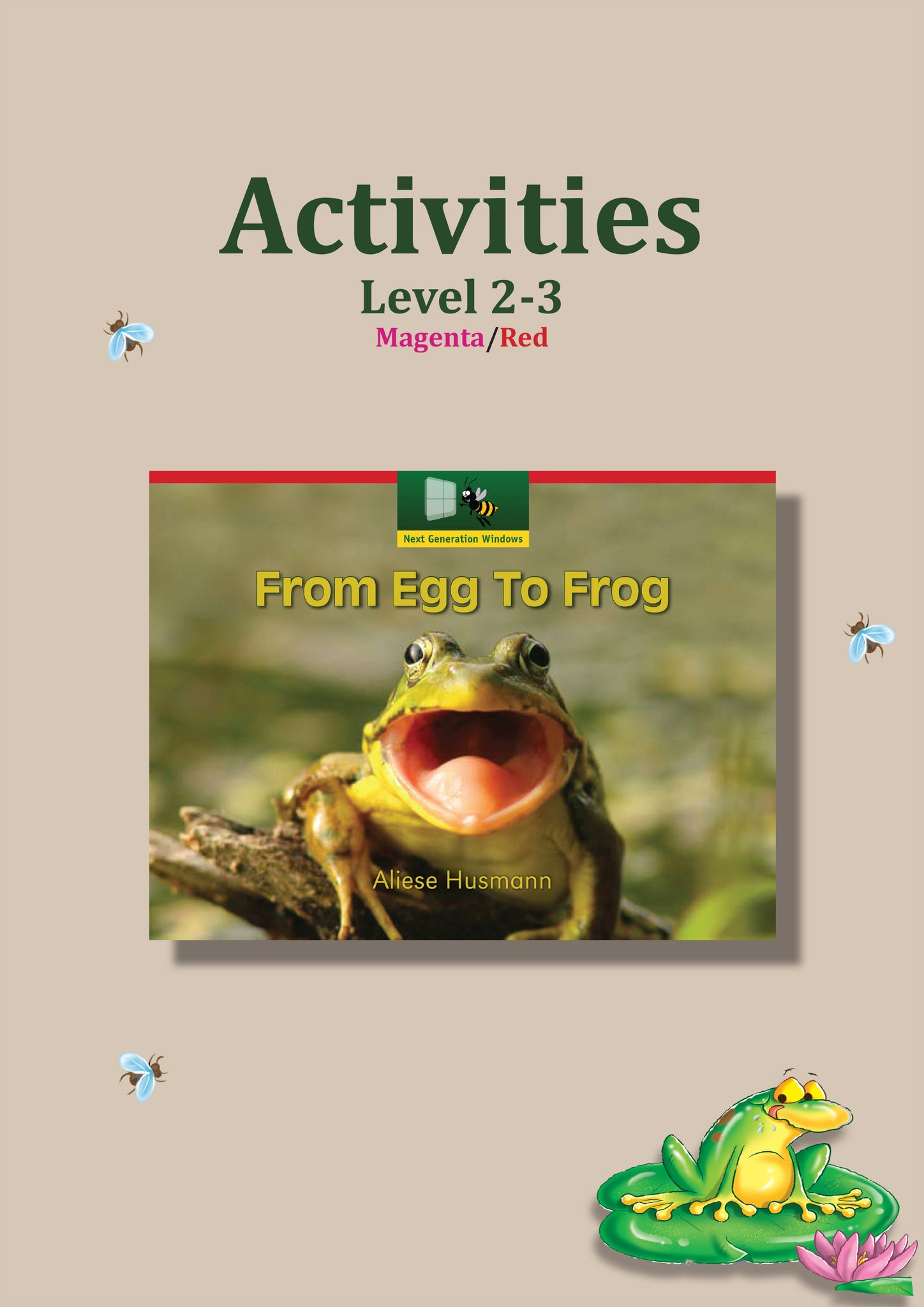 From Egg To Frog Activity Sheets