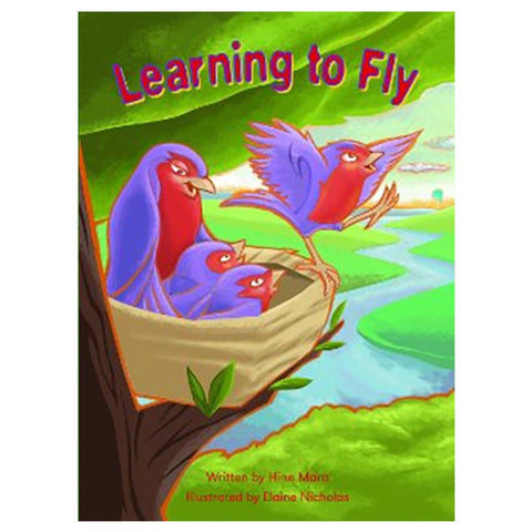 Learning to Fly Teacher Guide