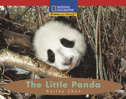 The Little Panda