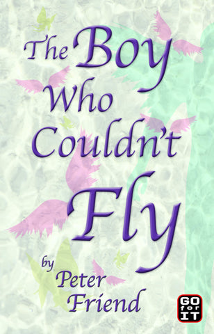 The Boy Who Couldn't Fly