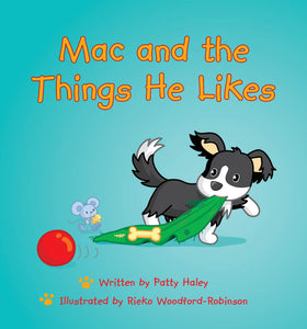Lap Book - Mac and the Things He Likes