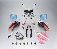 Robot Spirits (Side MS) Crossbone Gundam X-1 Full Cloth
