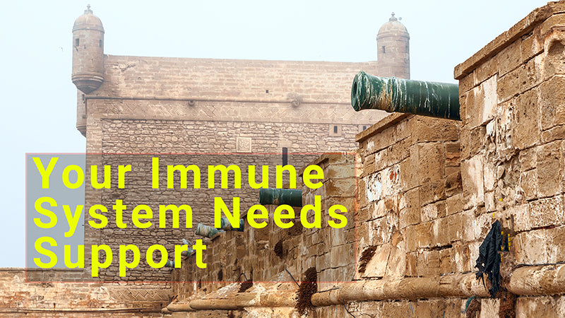 Immune system, support, fortress, walls