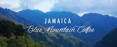 Blue mountain coffee, jamaican blue mountain coffee, jamaican coffee, specialty coffee, third wave coffee