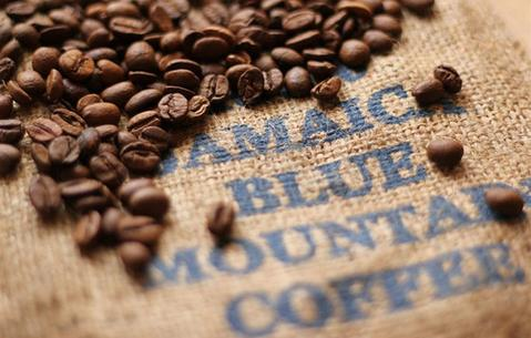 blue mountain coffee, jamaican blue mountain coffee, jamaican coffee, blue mountain coffee beans
