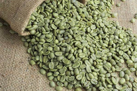 green coffee beans, raw coffee beans, home coffee roaster, coffee roaster, coffee news, coffee blog