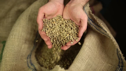 green coffee beans, raw coffee beans, unroasted coffee beans, coffee roaster