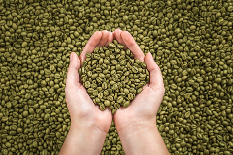green coffee, green coffee beans, coffee roaster, unroasted coffee beans, raw coffee beans