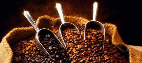 types of coffee, types of coffee beans, gourmet coffee, arabica coffee