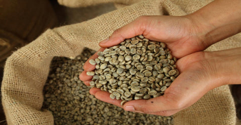 unroasted coffee beans, raw coffee beans, green coffee beans, coffee roaster, gourmet coffee