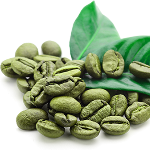 Brewing Green Coffee Beans At Home Step By Step Guide