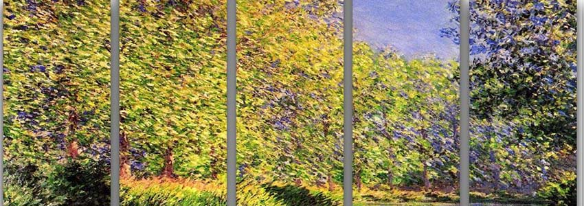 Monet 5 Split Panel Canvas Prints