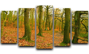A path through the woods at Haw park 5 Split Panel Canvas  - Canvas Art Rocks - 1