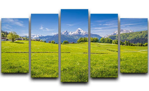 Alps with fresh green meadow 5 Split Panel Canvas  - Canvas Art Rocks - 1
