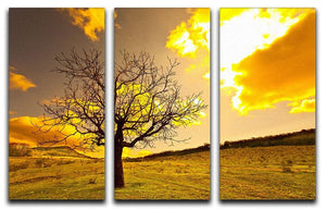 Autumn 3 Split Panel Canvas Print - Canvas Art Rocks - 1
