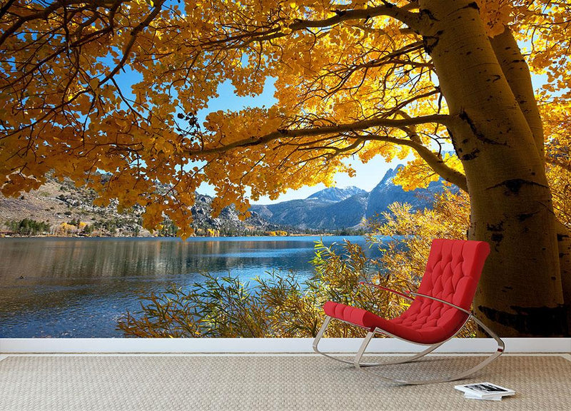 Autumn mountain lake Wall Mural Wallpaper - Canvas Art Rocks - 1