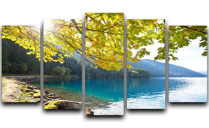 Autumn sun flare on lake 5 Split Panel Canvas