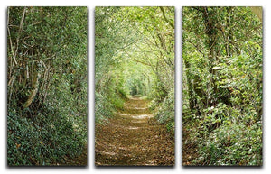 Avenue of trees 3 Split Panel Canvas Print - Canvas Art Rocks - 1