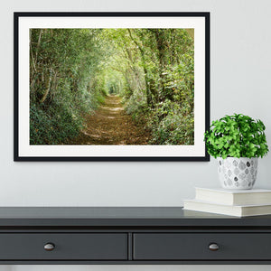 Avenue of trees Framed Print - Canvas Art Rocks - 1
