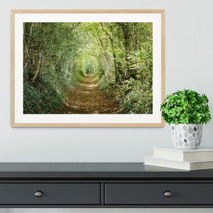 Avenue of trees Framed Print - Canvas Art Rocks - 3