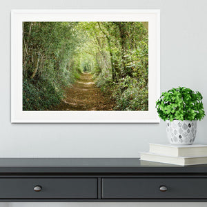 Avenue of trees Framed Print - Canvas Art Rocks - 5