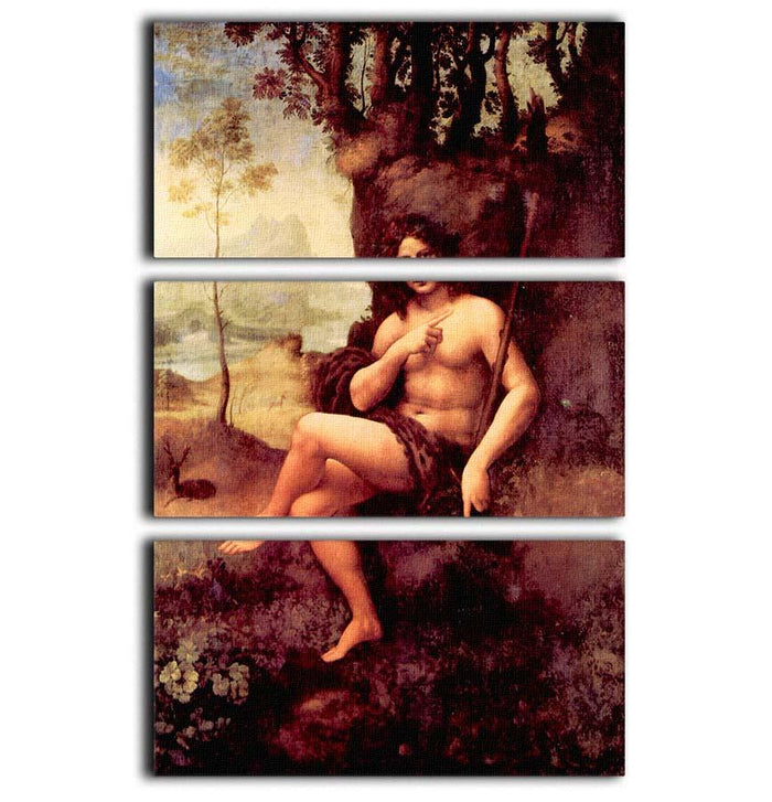 Bacchus by Da Vinci 3 Split Panel Canvas Print