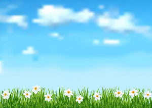 Background with grass and white flowers Wall Mural Wallpaper - Canvas Art Rocks - 1