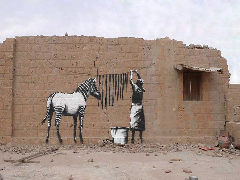 Banksy Washing Zebra Stripes Wall Mural Wallpaper - Canvas Art Rocks - 1