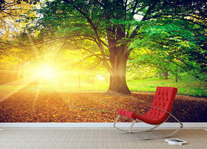 Beautiful park Wall Mural Wallpaper - Canvas Art Rocks - 2