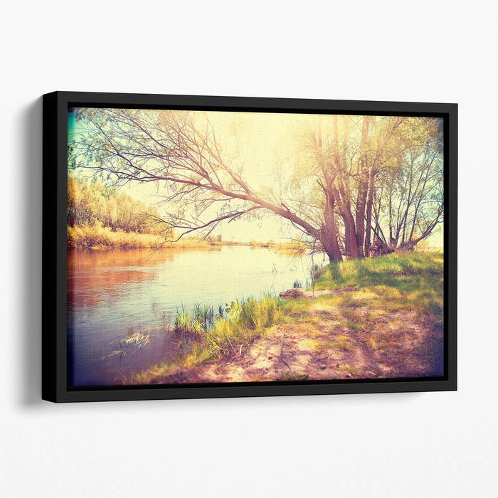Beautiful scene Floating Framed Canvas