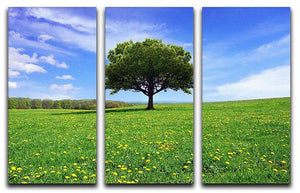 Beautiful spring landscape 3 Split Panel Canvas Print - Canvas Art Rocks - 1