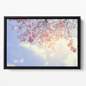 Beautiful tree pink flower in spring Floating Framed Canvas