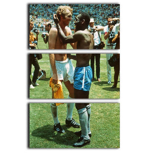 Bobby Moore and Pele 3 Split Panel Canvas Print - Canvas Art Rocks - 1