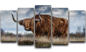 Bull 5 Split Panel Canvas