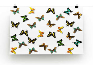 Butterfly Pattern Print - Canvas Art Rocks - 2