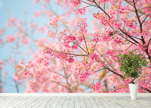 Cherry Blossom Wall Mural Wallpaper - Canvas Art Rocks - 4