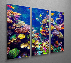 Coral Reef and Tropical Fish 3 Split Panel Canvas Print - Canvas Art Rocks - 2