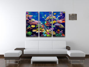 Coral Reef and Tropical Fish 3 Split Panel Canvas Print - Canvas Art Rocks - 3