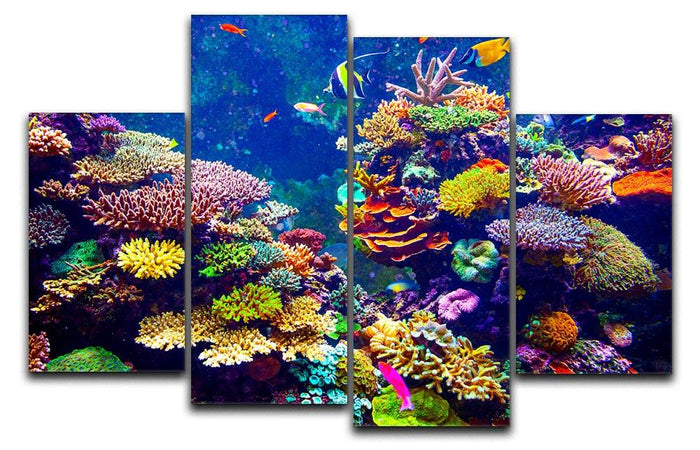 Coral Reef and Tropical Fish 4 Split Panel Canvas
