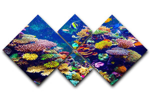 Coral Reef and Tropical Fish 4 Square Multi Panel Canvas  - Canvas Art Rocks - 1