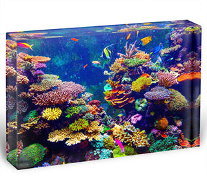 Coral Reef and Tropical Fish Acrylic Block - Canvas Art Rocks - 1