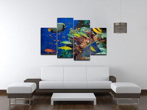 Coral Reef on Red Sea 4 Split Panel Canvas  - Canvas Art Rocks - 3
