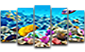 Corals and tropical fish 5 Split Panel Canvas  - Canvas Art Rocks - 1