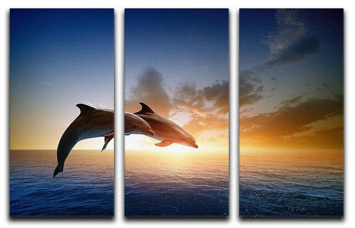 Couple jumping dolphins 3 Split Panel Canvas Print