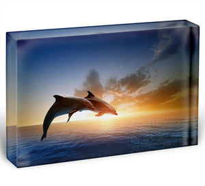 Couple jumping dolphins Acrylic Block - Canvas Art Rocks - 1