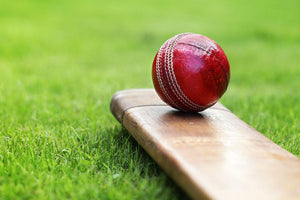 Cricket ball resting on a cricket bat Wall Mural Wallpaper - Canvas Art Rocks - 1