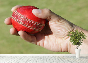 Cricket bowler about to bowl Wall Mural Wallpaper - Canvas Art Rocks - 4