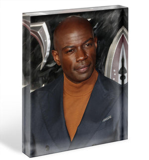 David Gyasi Acrylic Block - Canvas Art Rocks - 1
